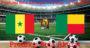Prediksi Bola Senegal Vs Benin 10 Juli 2019